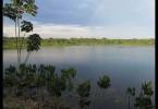 Malé jezero v Amazonii