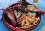 Lobster kam se podíváš