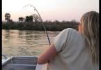 Lovíme tygří rybu