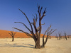 namibia2_small