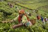 rwanda1_small