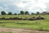 southsudan1_small