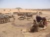 sudan2_small